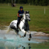 Lauren Eckardt Eventing Rider Trainer